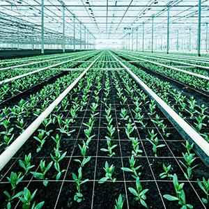 Irrigation-tile